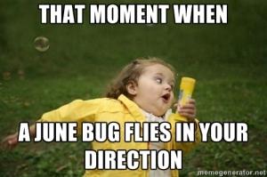 June bug meme